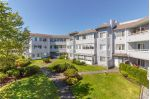 Main Photo: 308 3921 Shelbourne Street in VICTORIA: SE Mt Tolmie Condo Apartment for sale (Saanich East)  : MLS®# 392111