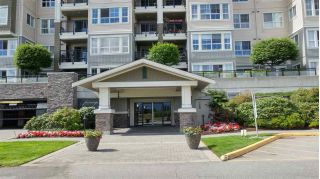 Main Photo: 219 19673 MEADOW GARDENS Way in Pitt Meadows: North Meadows PI Condo for sale : MLS®# R2285917