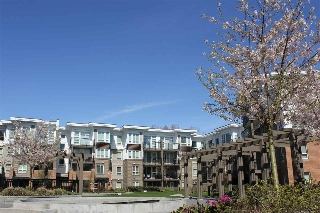 "Main Photo: 435 9500 ODLIN Road in Richmond: West Cambie Condo for sale in ""Cambridge Park"" : MLS(r) # R2003928"