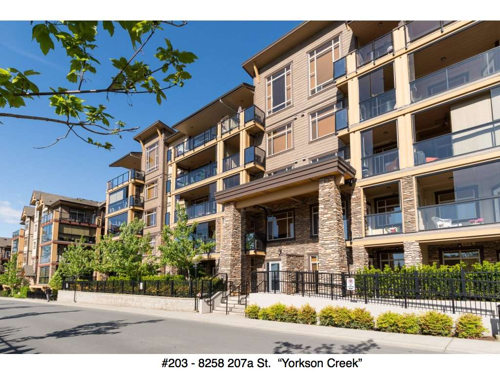 "Main Photo: 203 8258 207A Street in Langley: Willoughby Heights Condo for sale in ""YORKSON CREEK"" : MLS® # R2065419"