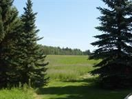 Main Photo: RR 244 Twp 500: Rural Leduc County Rural Land/Vacant Lot for sale : MLS®# E4092640