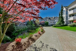 Main Photo: 214 7151 121 Street in Surrey: West Newton Condo for sale : MLS® # R2057191