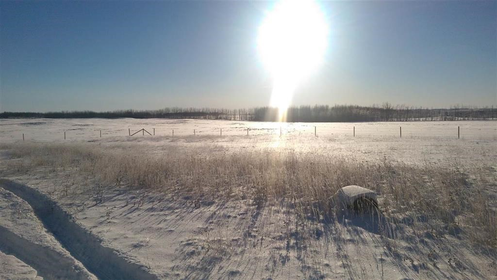 Main Photo: TWP 460 Range Road 11: Rural Wetaskiwin County Rural Land/Vacant Lot for sale : MLS(r) # E4055633