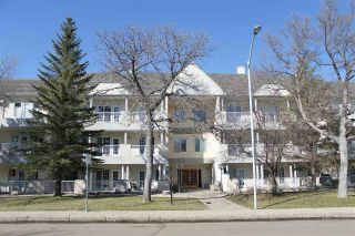 Main Photo: 208 11650 79 Avenue in Edmonton: Zone 15 Condo for sale : MLS®# E4104375