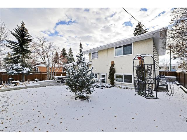 Photo 24: 5924 LEWIS Drive SW in Calgary: Lakeview House for sale : MLS® # C4040273
