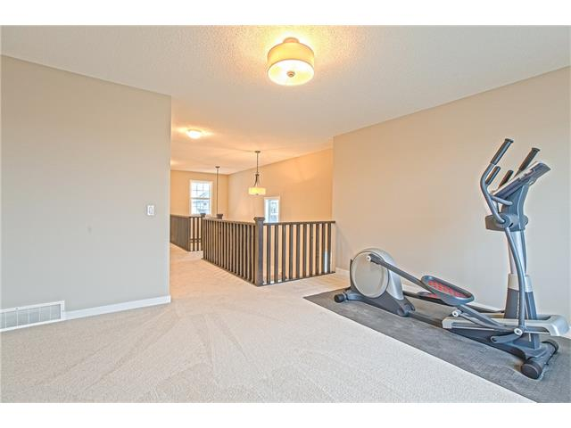 Photo 20: 225 CRANBERRY Circle SE in Calgary: Cranston House for sale : MLS® # C4051122