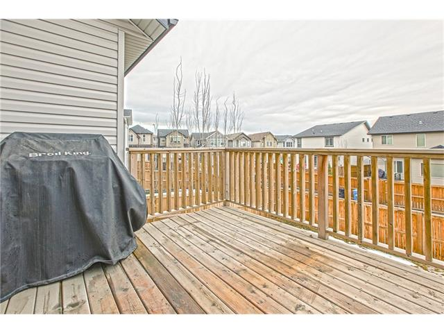 Photo 34: 225 CRANBERRY Circle SE in Calgary: Cranston House for sale : MLS® # C4051122
