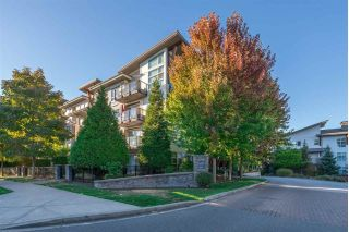 "Main Photo: 219 6688 120TH Street in Surrey: West Newton Condo for sale in ""Zen at SALUS"" : MLS® # R2228623"