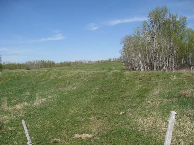 Main Photo: 0 SEC 633 RR 54: Rural Lac Ste. Anne County Agri-Business for sale : MLS(r) # E1023379