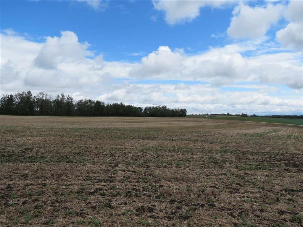 Photo 8: 5 24311 TWP 552: Rural Sturgeon County Rural Land/Vacant Lot for sale : MLS® # E4047568