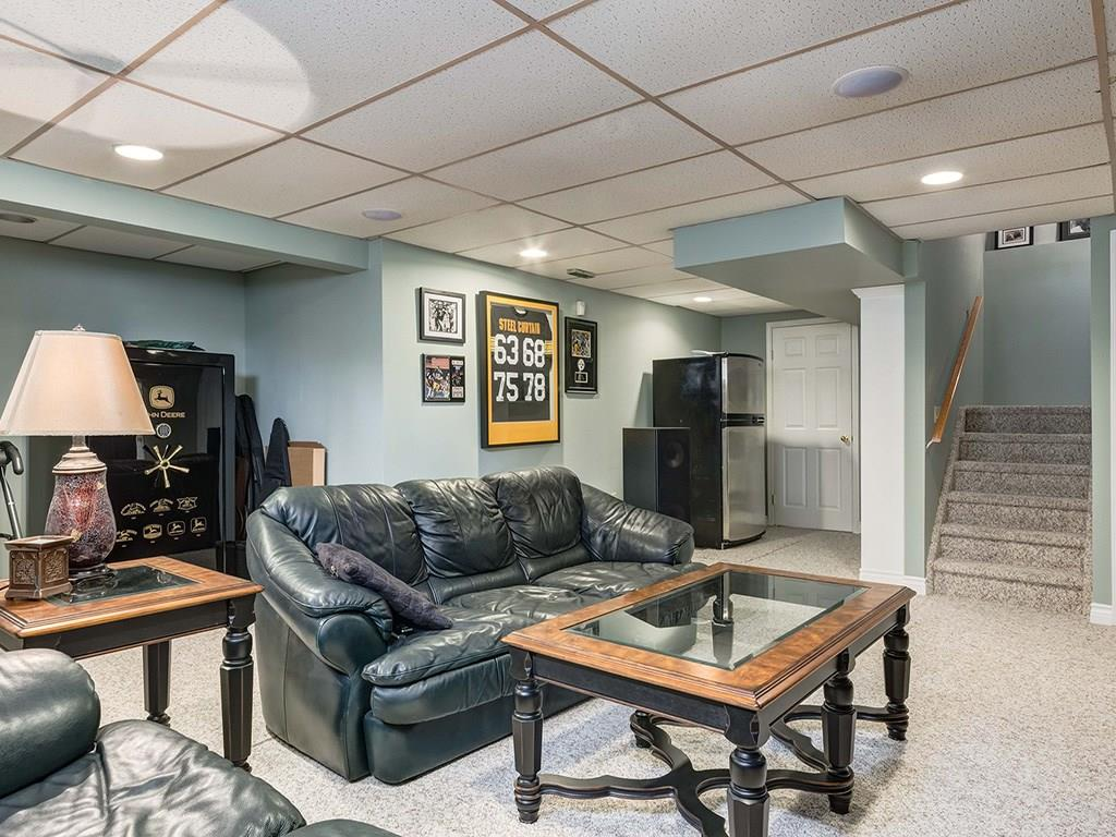 Lower Level Family Room / Rec Room