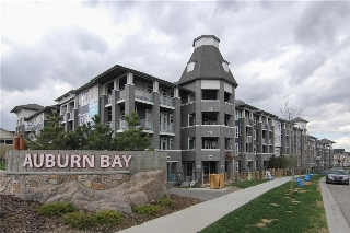 Main Photo: 126 25 Auburn Meadows Avenue SE in Calgary: Auburn Bay Condo for sale : MLS® # C4136122