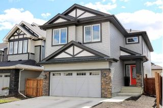 Main Photo: 852 CRYSTALLINA NERA Way in Edmonton: Zone 28 House for sale : MLS®# E4121804