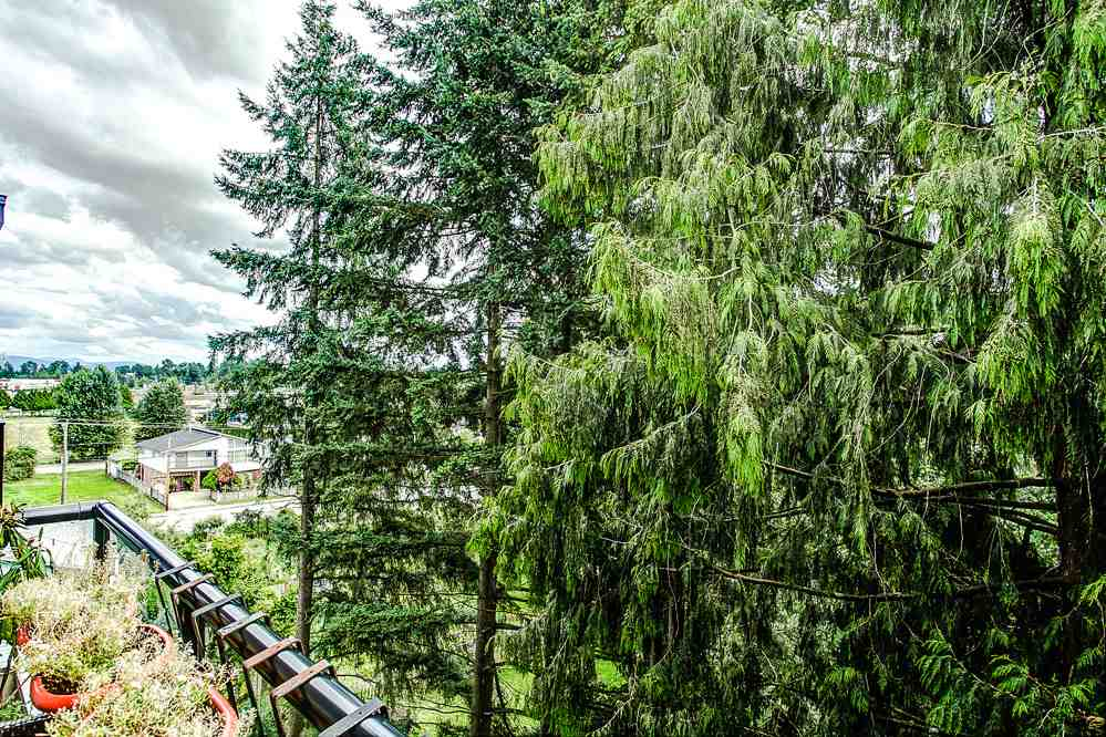 "Photo 12: 509 2214 KELLY Avenue in Port Coquitlam: Central Pt Coquitlam Condo for sale in ""SPRING"" : MLS(r) # R2097396"