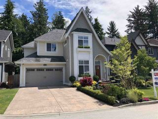 Main Photo: 316 171A Street in Surrey: Pacific Douglas House for sale (South Surrey White Rock)  : MLS®# R2279329