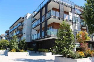 "Main Photo: 102 12070 227 Street in Maple Ridge: East Central Condo for sale in ""STATION ONE"" : MLS®# R2300968"