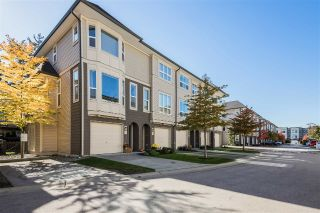 "Main Photo: 126 7938 209 Street in Langley: Willoughby Heights Townhouse for sale in ""Red Maple Park"" : MLS®# R2316102"