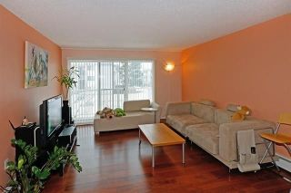 Main Photo: 206 7240 LINDSAY Road in Richmond: Granville Condo for sale : MLS® # R2211480