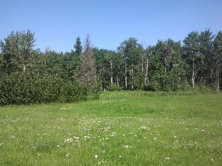 Main Photo: 16 51222 RGE RD 260 Road: Rural Parkland County Rural Land/Vacant Lot for sale : MLS® # E4045128