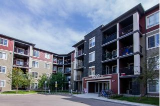 Main Photo: 212 5390 CHAPPELLE Road in Edmonton: Zone 55 Condo for sale : MLS®# E4115557