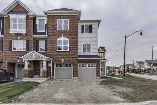 Main Photo: 8 Quillberry Close in Brampton: Northwest Brampton House (3-Storey) for lease : MLS® # W3643986