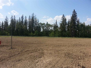 Main Photo: 1320 CLEMENT Court in Edmonton: Zone 20 Vacant Lot for sale : MLS(r) # E4052797