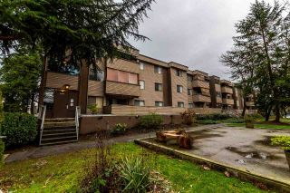 "Main Photo: 23 2435 KELLY Avenue in Port Coquitlam: Central Pt Coquitlam Condo for sale in ""ORCHARD VALLEY"" : MLS® # R2236079"