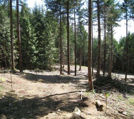 Main Photo: 1975 PIXTON Road: Roberts Creek Land Only for sale (Sunshine Coast)  : MLS(r) # R2047271