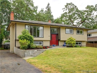 Main Photo: 1725 Jefferson Avenue in VICTORIA: SE Lambrick Park Single Family Detached for sale (Saanich East)  : MLS®# 365554