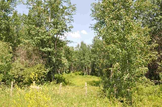 Main Photo: RR 22 TWP RD 560: Rural Lac Ste. Anne County Rural Land/Vacant Lot for sale : MLS®# E4051255