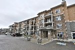 Main Photo: 319 6070 SCHONSEE Way in Edmonton: Zone 28 Condo for sale : MLS® # E4076963