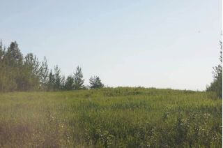 Main Photo: Range Road 150 HWY 748 East: Rural Yellowhead Rural Land/Vacant Lot for sale : MLS®# E4094060
