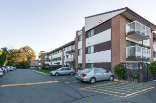 Main Photo: 305 8080 RYAN Road in Richmond: South Arm Condo for sale : MLS®# R2254881