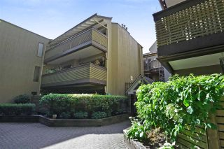 "Main Photo: 109 3191 MOUNTAIN Highway in North Vancouver: Lynn Valley Condo for sale in ""LYNN TERRACE 2"" : MLS®# R2305548"