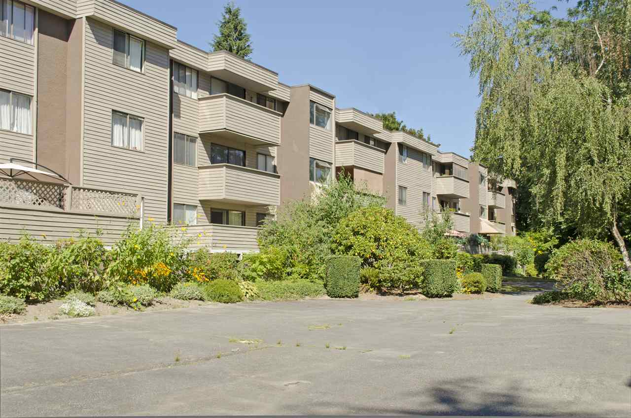 "Main Photo: 34 2445 KELLY Avenue in Port Coquitlam: Central Pt Coquitlam Condo for sale in ""ORCHARD VALLEY"" : MLS® # R2103333"