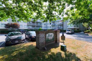 "Main Photo: 109 19236 FORD Road in Pitt Meadows: Central Meadows Condo for sale in ""Emerald Park"" : MLS®# R2296051"