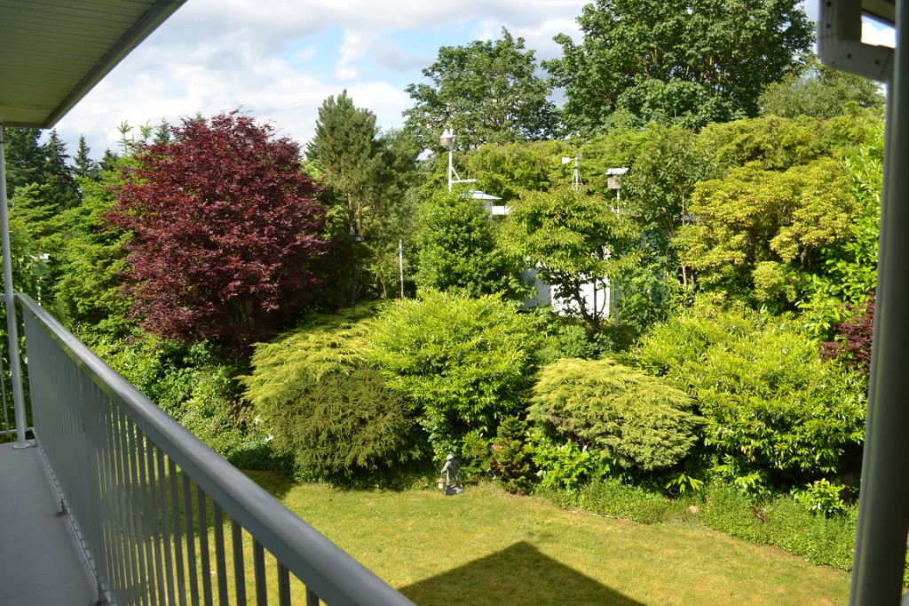 Photo 27: 34839 HIGH DR in Abbotsford: Abbotsford East House for sale : MLS(r) # F1313633