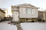 Main Photo: 213 KIRKWOOD Avenue in Edmonton: Zone 29 House for sale : MLS(r) # E4050408