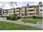 "Main Photo: 34 2444 WILSON Avenue in Port Coquitlam: Central Pt Coquitlam Condo for sale in ""Orchard Valley Estates"" : MLS® # R2240111"