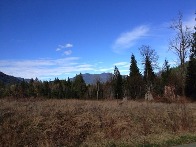 Photo 14: Photos: LOT 8 CASCADIA PARKWAY in Gibsons: Gibsons & Area Home for sale (Sunshine Coast)  : MLS®# R2044998
