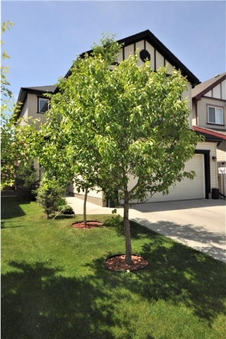 Main Photo: 13 COPPERLEAF Way SE in Calgary: Copperfield House for sale : MLS(r) # C4113652