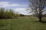 Main Photo: 57202 RR 230: Rural Sturgeon County Rural Land/Vacant Lot for sale : MLS® # E4063851