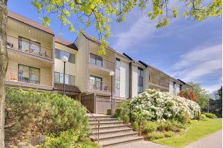 "Main Photo: 218 13775 74 Avenue in Surrey: East Newton Condo for sale in ""Hampton Place"" : MLS®# R2267062"