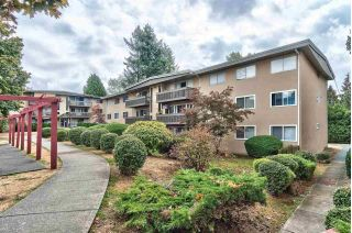 "Main Photo: 91 5820 HASTINGS Street in Burnaby: Capitol Hill BN Condo for sale in ""KENSINGTON GARDENS"" (Burnaby North)  : MLS®# R2305991"