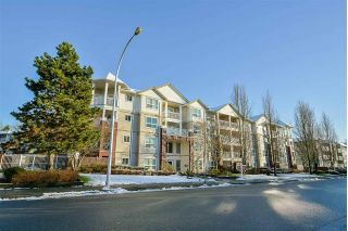 Main Photo: 108 8068 120A Street in Surrey: Queen Mary Park Surrey Condo for sale : MLS®# R2264701