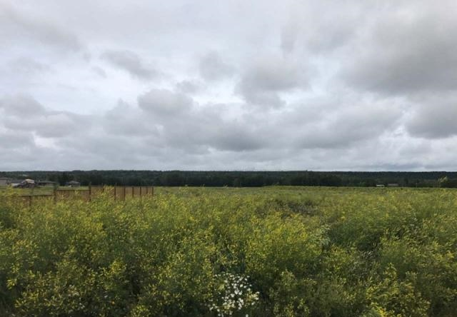 Main Photo: 38 Riverdale Bend in Whitecourt: Rural Land/Vacant Lot for sale : MLS® # 44113