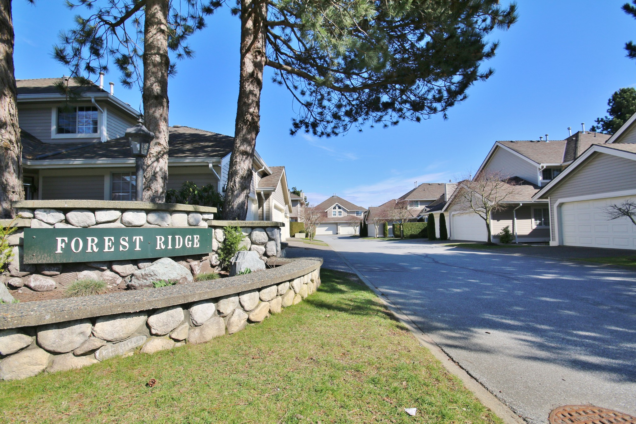 "Main Photo: 19 6380 121 Street in Surrey: Panorama Ridge Townhouse for sale in ""Forest Ridge"" : MLS®# R2250190"
