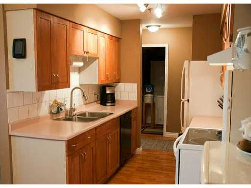 Main Photo: 327 22661 LOUGHEED Highway in Maple Ridge: East Central Condo for sale : MLS® # V980911