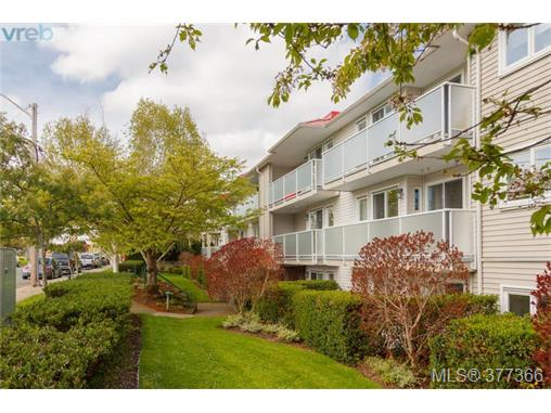 Main Photo: 305 3180 Albina Street in VICTORIA: SW Tillicum Condo Apartment for sale (Saanich West)  : MLS® # 377366