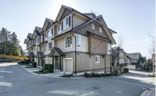 "Main Photo: 41 4967 220 Street in Langley: Murrayville Townhouse for sale in ""WINCHESTER ESTATES"" : MLS®# R2246414"